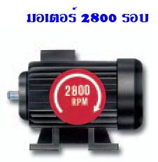 ปั๊ม-มอเตอร์ 2800